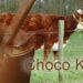 Chocolademelk komt van bruine koeien